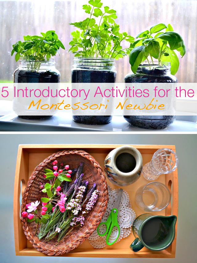 Montessori plant activities for kids - great ideas here for Earth Day!