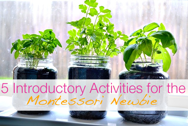 5 Montessori planting activities for kids