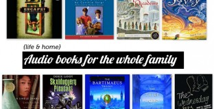 Great list - our kids love audio books for long car rides!