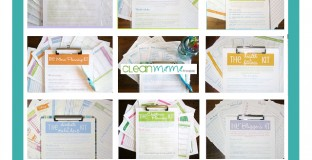 clean-mama-printables-prize-pack