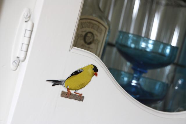 birdwatching7