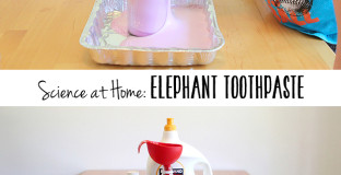 Home science experiment: Elephant Toothpaste - kids go crazy for this one and you can make it REALLY big if you want to.