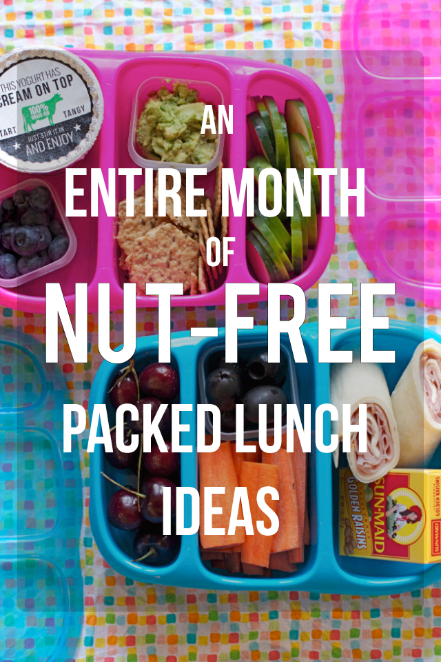 I LOVE this - seriously feel like this one post has equipped me to send healthy, nut-free lunches to school all year!!!