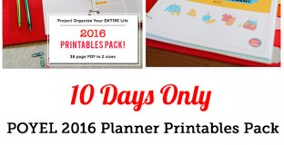 POYEL 2016 Planner Printables & Kids' Responsibility and Money Management Packets on big sale!