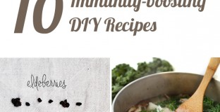 Immunity Boosting Recipes to Keep Your Family Healthy this Cold and Flu Season- can't wait to start feeding these to my family!